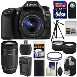 Canon EOS 80D Wi-Fi Digital SLR Camera and EF-S 18-55mm IS STM Lens with 55-250mm IS STM Lens + 64GB + Battery and Charger + Backpack + Tripod + 2 Lens Kit