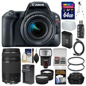 Canon EOS Rebel SL2 Wi-Fi Digital SLR Camera and EF-S 18-55mm IS STM Lens - Black - with 75-300mm III Lens + 64GB Card + Case + Flash + Diffuser + Battery and Charger + Kit
