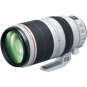 Canon EF 100-400mm f-4.5-5.6 L IS II USM Telephoto Zoom Lens