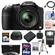 Panasonic Lumix DMC-FZ200 Digital Camera (Black) with 64GB Card + Case + Battery + Flash + 3 Filters + Tripod + HDMI Cable + Accessory Kit